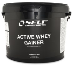 New Active Whey Gainer